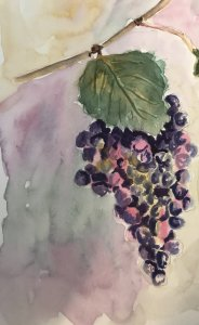 The theme for the second day of #WorldWatercolorMonth was food. Love wine and grapes, so I tried thi
