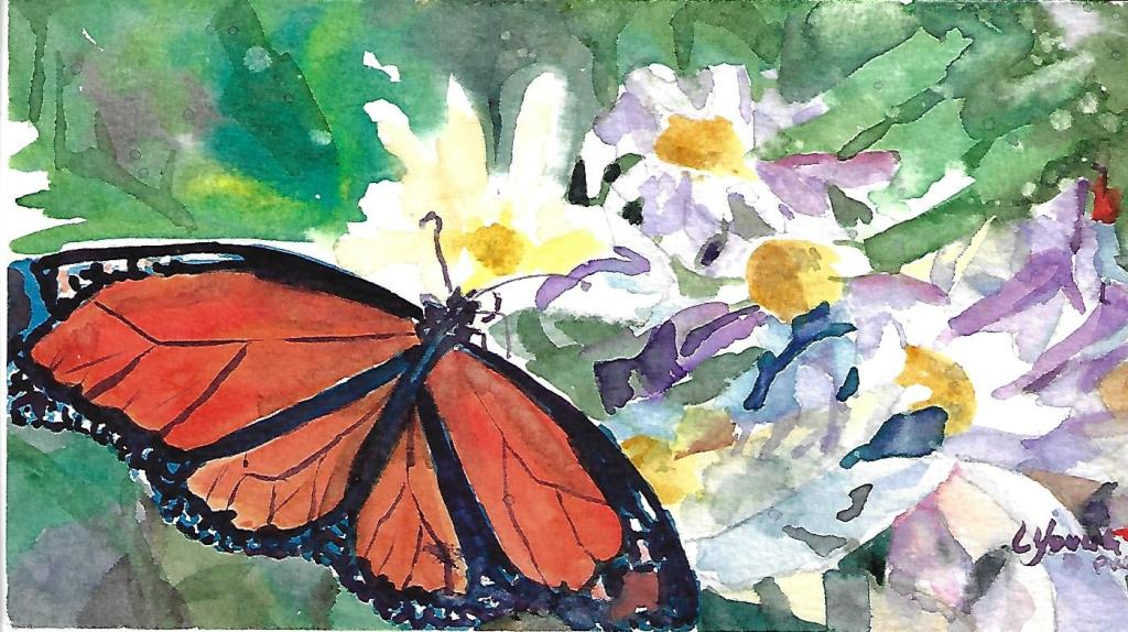 It's the time of the year when butterflies are flying around, pollinating flowers and vegetabl