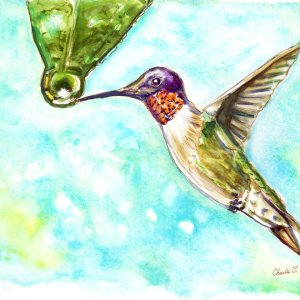 Hummingbird Watercolor Print Detail