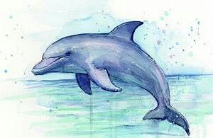 – #22Day #OceanCreature #dolpine #WorldWaterColorMonth #DoodleWashAugust 20180821_210021