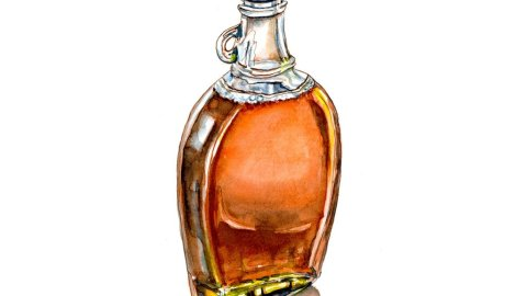 Day 23 - Bottle Of Maple Syrup Watercolor - Doodlewash