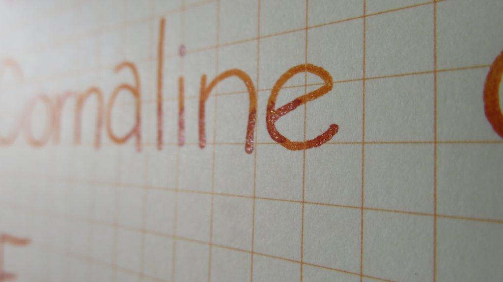 Cornaline d'Egypte J. Herbin Ink Lettering Detail - Doodlewash