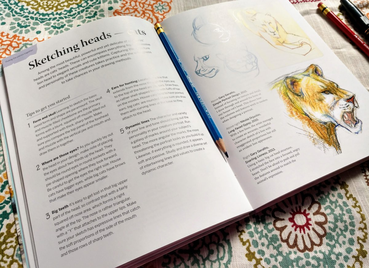 5-Minute Sketching Book Interior Detail