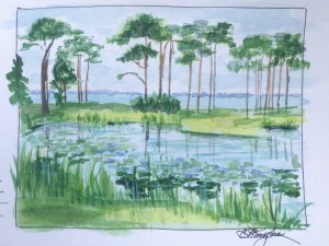 Another little urban watercolor sketch in our town park of the water lily pond overlooking the bay.