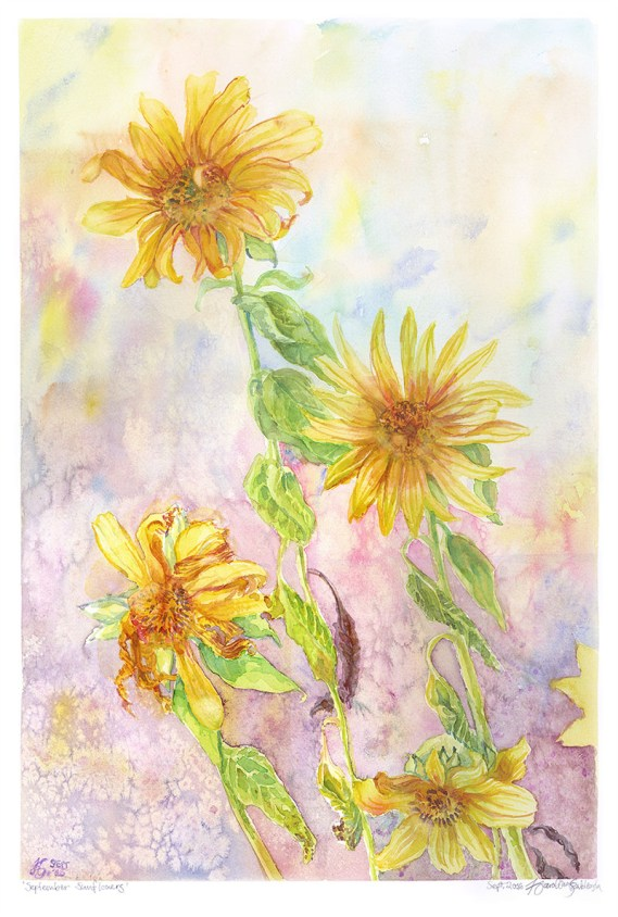 September Sunflowers - Watercolor by Karolina Szablewska - Doodlewash