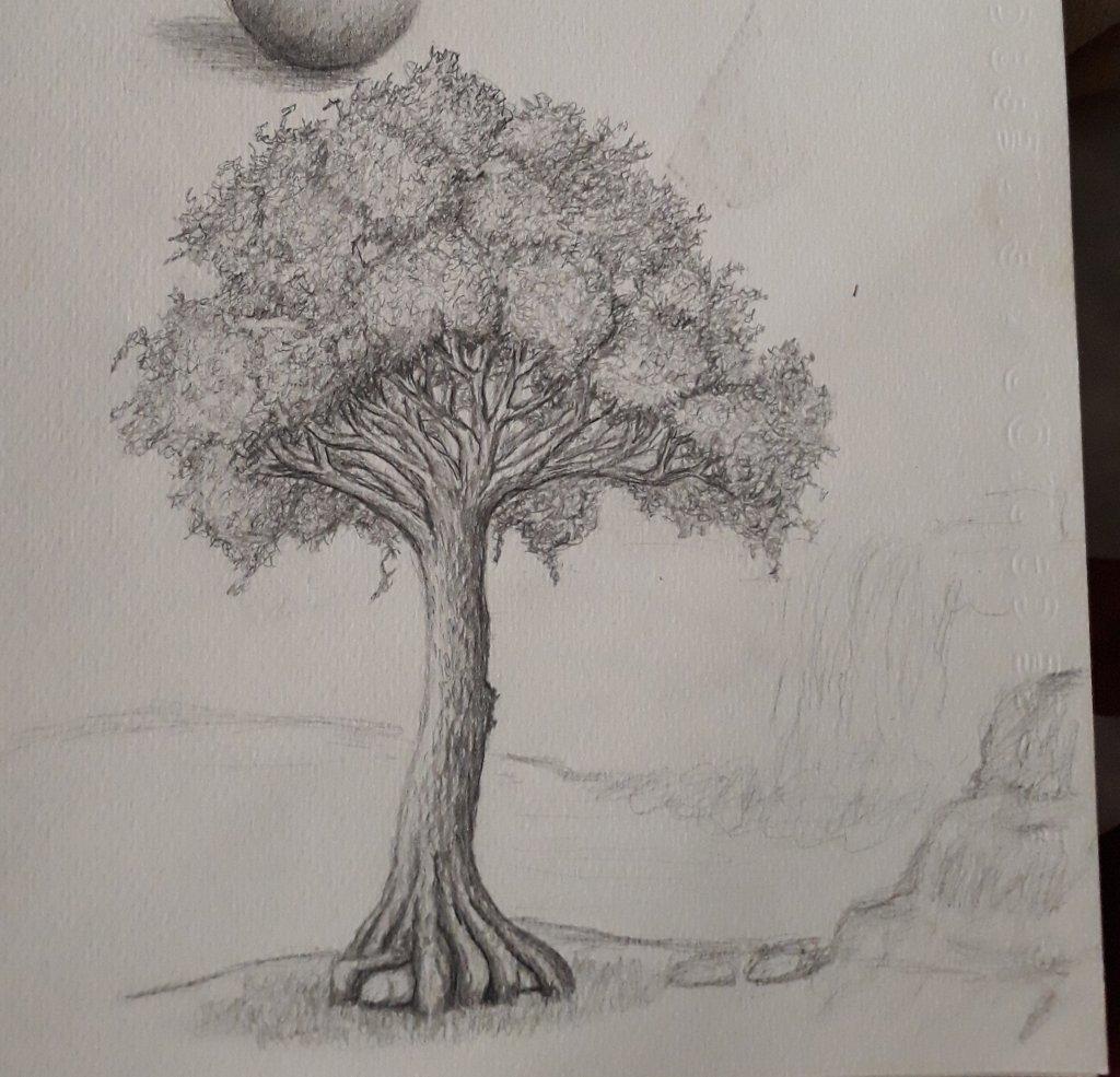 Simple pencil sketch still in progress 20180727_150726