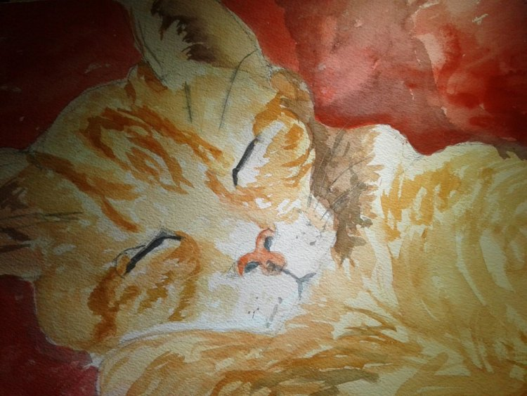 Okay, it has been about a two-month hiatus from me painting daily. Here\'s a ginger cat. Hopef
