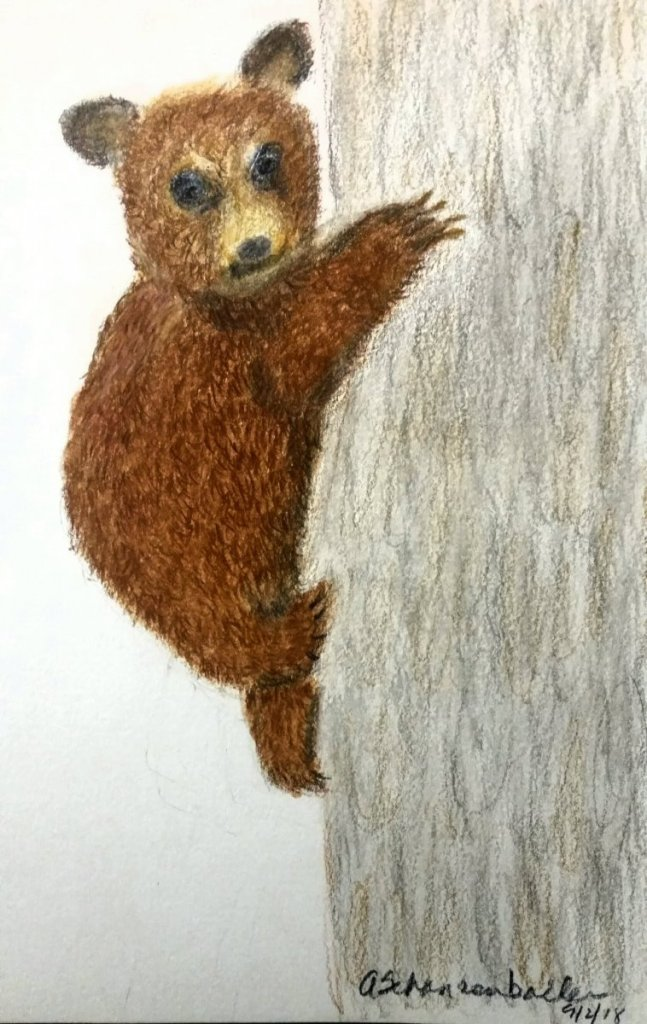 Here is another attempt at a bear. It still looks like a teddy bear 🙂 Bear on tree