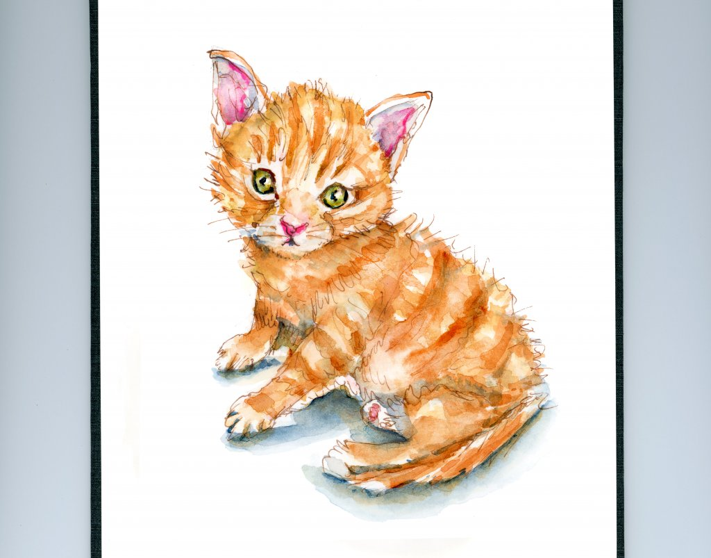 Day 1 - Ginger Cat Appreciation Day - Doodlewash