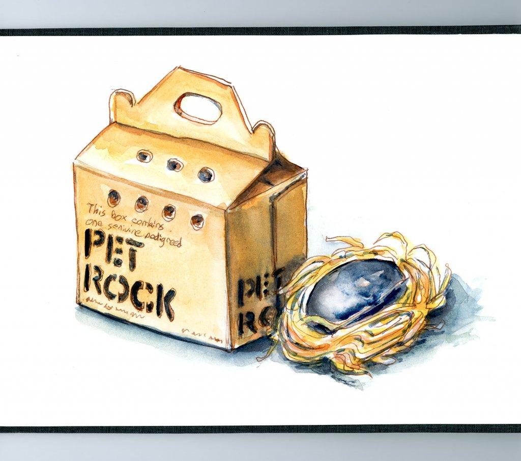 Day 2 - Pet Rock And Box Original 70s - Doodlewash
