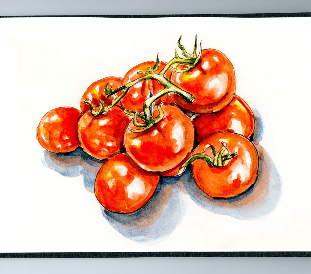 Day 28 - Hug A Vegetarian Day Tomato Watercolor - Doodlewash