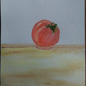 I used the sample of Winsor and Newton professional watercolors and paper to paint this tomato lying