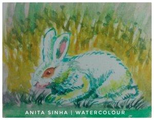 #Rabbit #Animal study #doodlewash #WorldWatercolorGroup IMG_20180923_064013_225-01