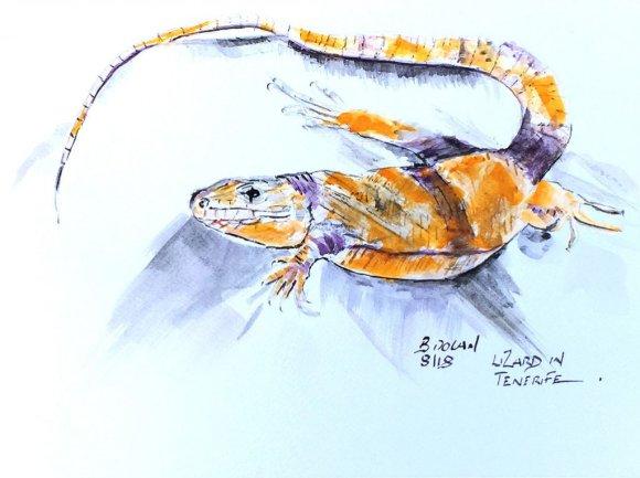 Lizard Watercolor by Bernadette Tully Dolan - Doodlewash