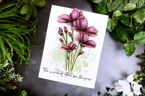 Strangeness Flowers Watercolor by Rubeena Ianigro - Doodlewash