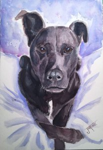 Shadow, Daniel Smith Watercolors on Arches Cold Press, 7 x 10 Shadow-(crop)