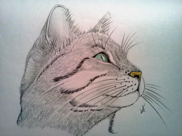 Cat Portrait Watercolor Painting by Walt Pierluissi - Doodlewash