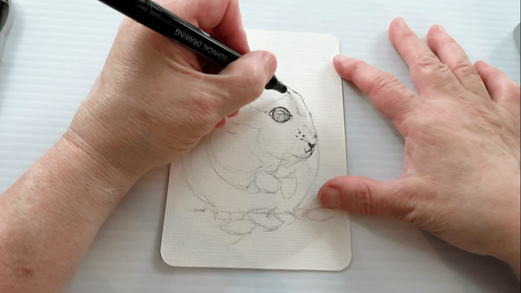 How to Draw A Hamster - Step 2 - Ink - Doodlewash