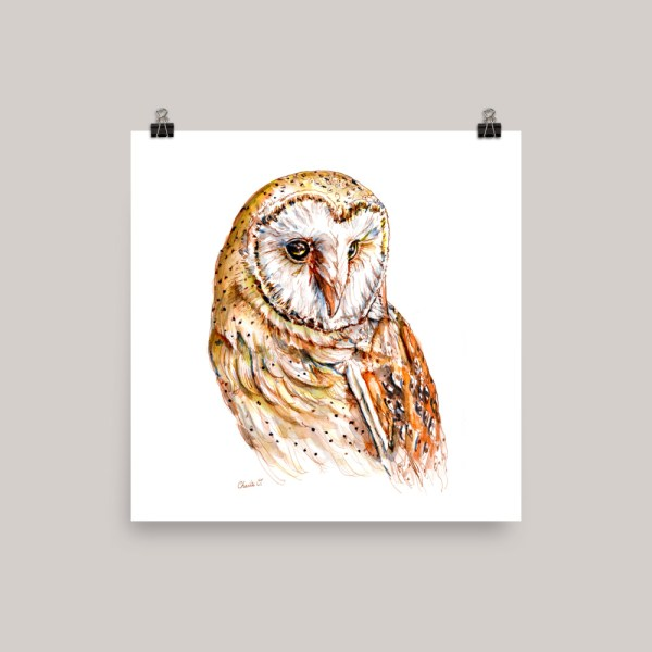 Barn Owl Watercolor Print Example