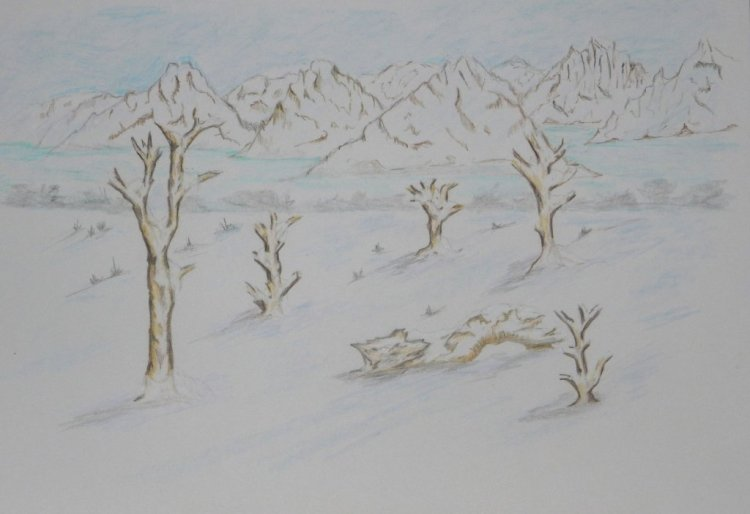World Watercolour Group™. TREES IN THE WILDERNESS. Started as a try out for Bristol board, I