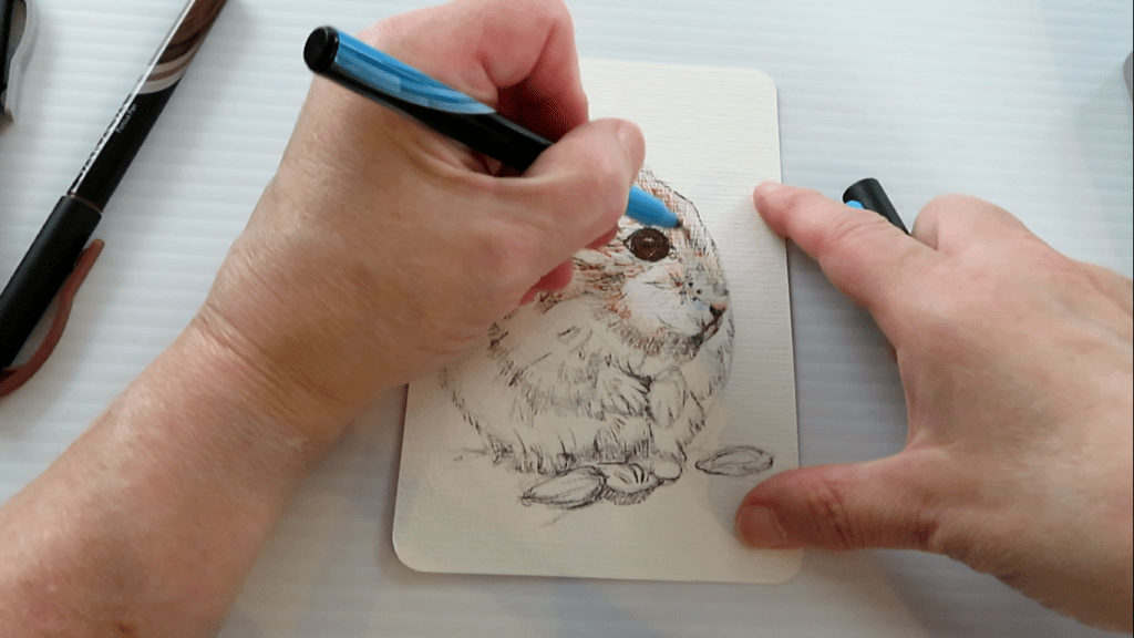 How to Draw A Hamster - Step 7 - Adding Blue Shadows - Doodlewash