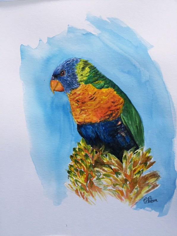 Watercolor Parrot Painting by Claudia Polena - Doodlewash