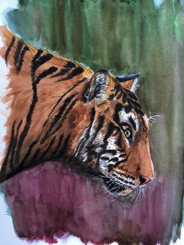 Watercolor Tiger Otter Painting by Claudia Polena - Doodlewash