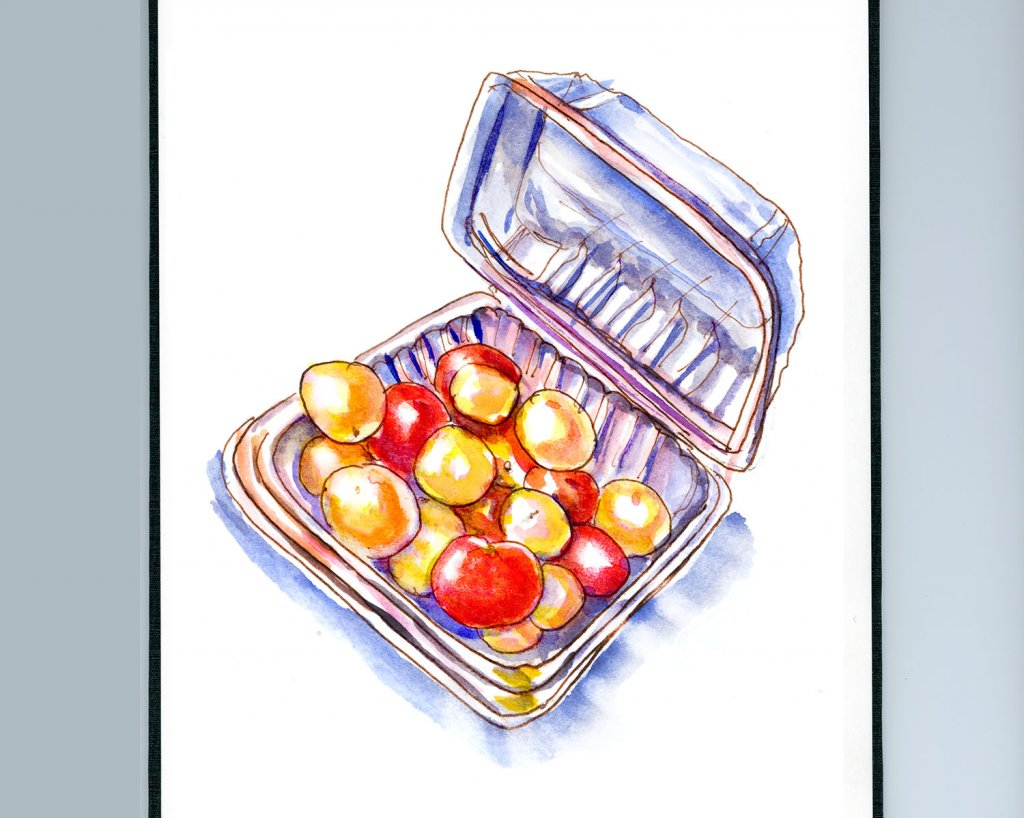 Day 15 - Grocery Store Cherry Tomatoes Clamshell Sketchbook - Doodlewash