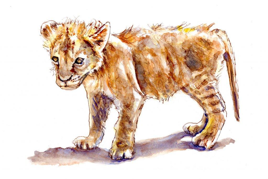Day 30 - Lion Cub Watercolor Courage - Doodlewash