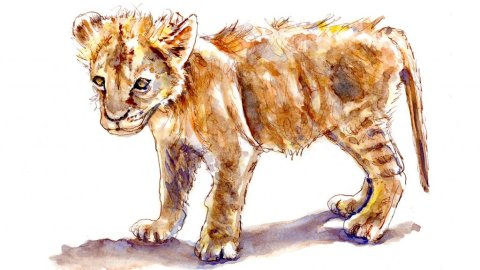 Day 30 - Lion Cub Watercolor Courage - Doodlewash