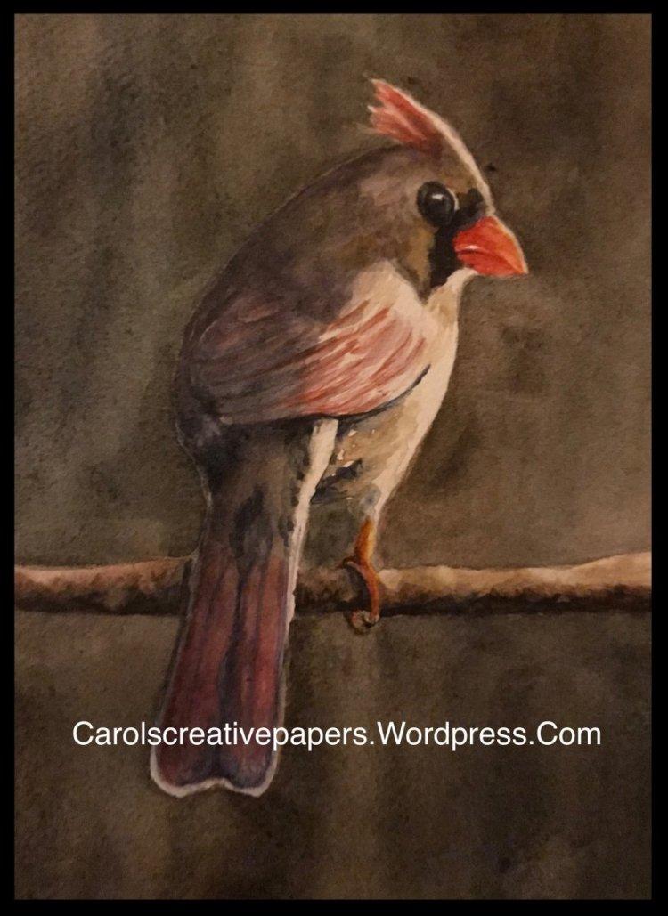 Morning Has Broken. Female cardinal in watercolor. BEE80D73-FFBD-4DE1-A179-E1A9137FC3ED