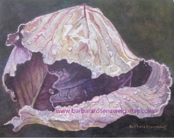 Cabbage Leaf Watercolor by Barbara Rosenzweig - Doodlewash