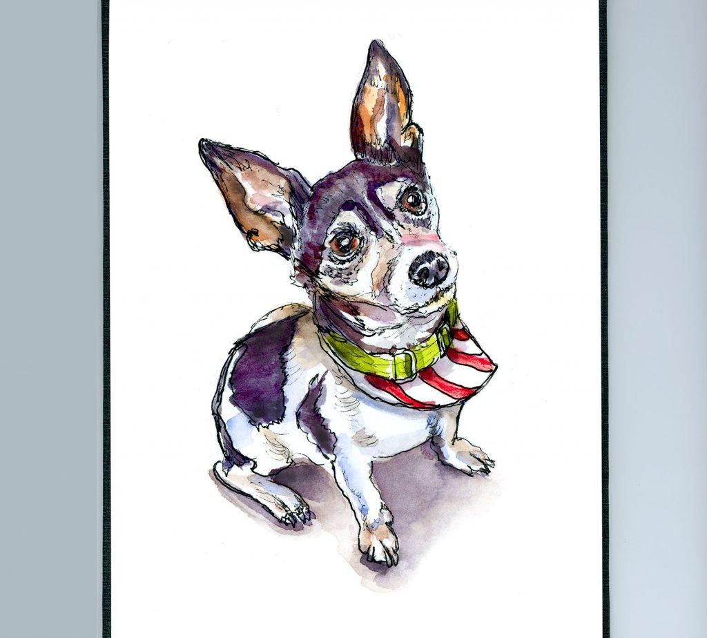 Day 20 - Christmas Dog Out Pet Portrait Watercolor - Sketchbook Detail - Doodlewash