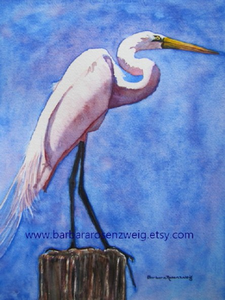 Egret Great White Watercolor by Barbara Rosenzweig - Doodlewash
