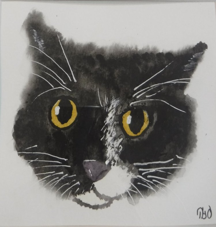 I've been working on other projects, like this portrait of my sister's cat. I guess it f