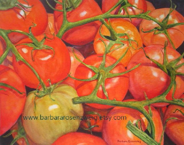 Tomatoes Watercolor by Barbara Rosenzweig - Doodlewash