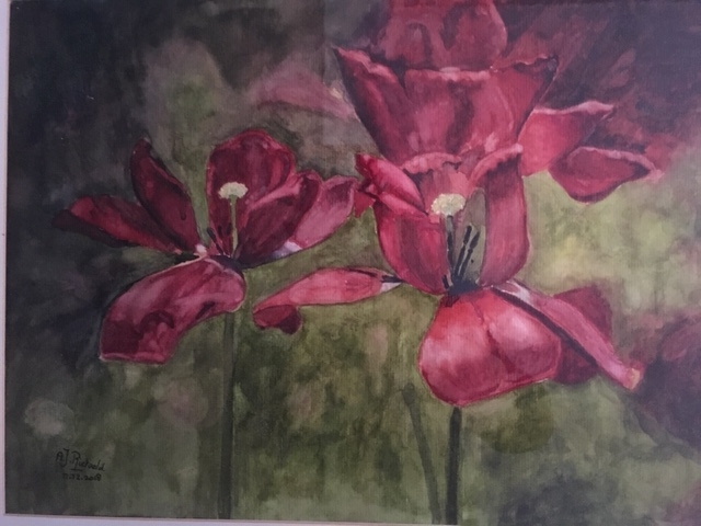 I wanted to show the faded beauty of tulips after paining so many flowers in full bloom. 2018-12-04