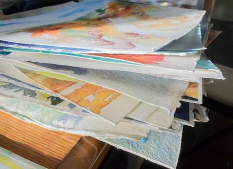 Angela Fehr Watercolor Paintings In Progress - Doodlewash