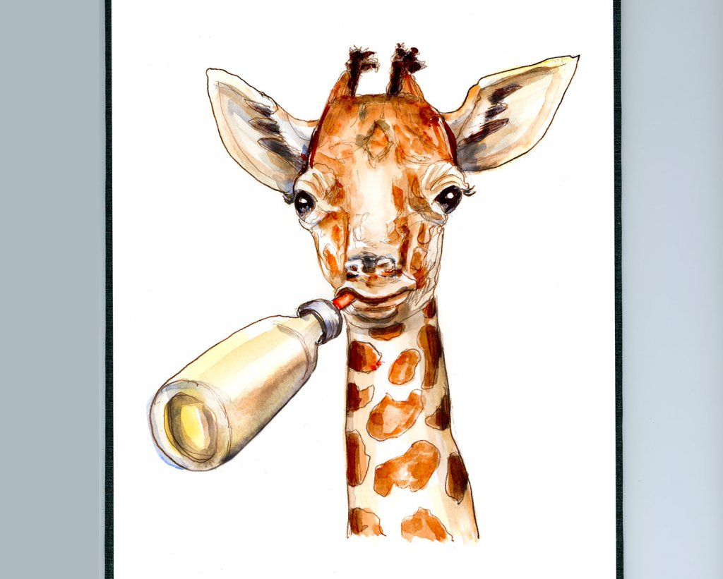 Day 12 - Baby Giraffe Illustration - Sketchbook Detail - Doodlewash