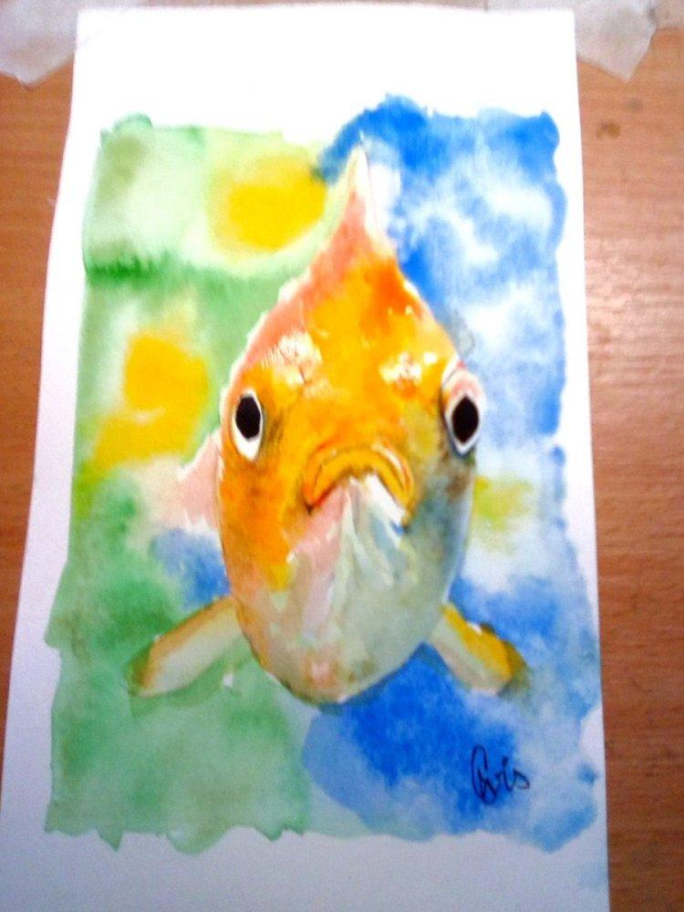 My effort for Jan 4 Doodlewash- aquariums IMG_20190104_175238_kindlephoto-56377860