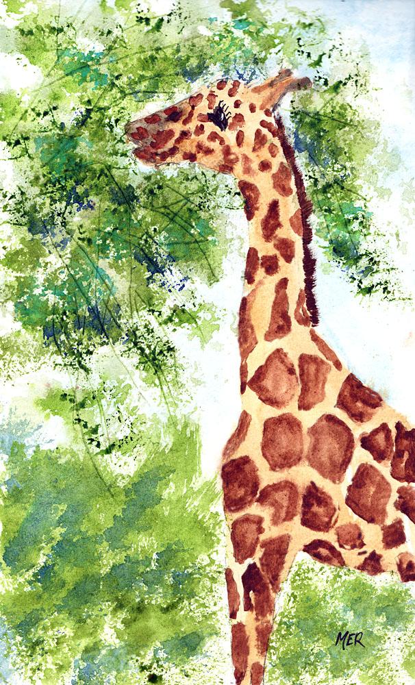 2/16/19 Giraffe 2.16.19 Giraffe mg168
