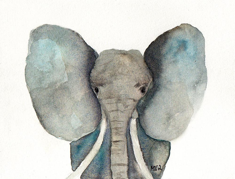 2/7/19 Elephant 2.7.19 Elephant img154