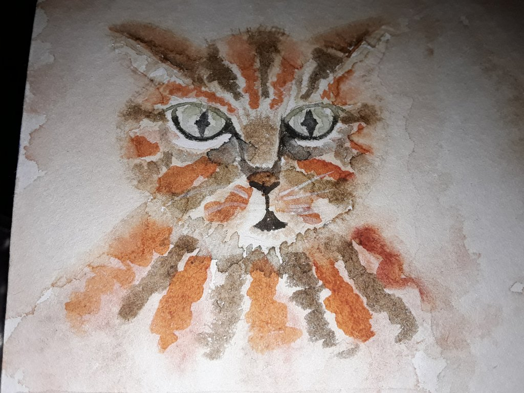 Day 12 -cat. A little ginger tabby. #doodlewashFebruary2019 #WorldWatercolourGroup 20190217_194609