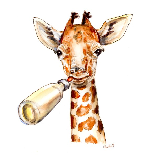 Baby Giraffe Watercolor Detail
