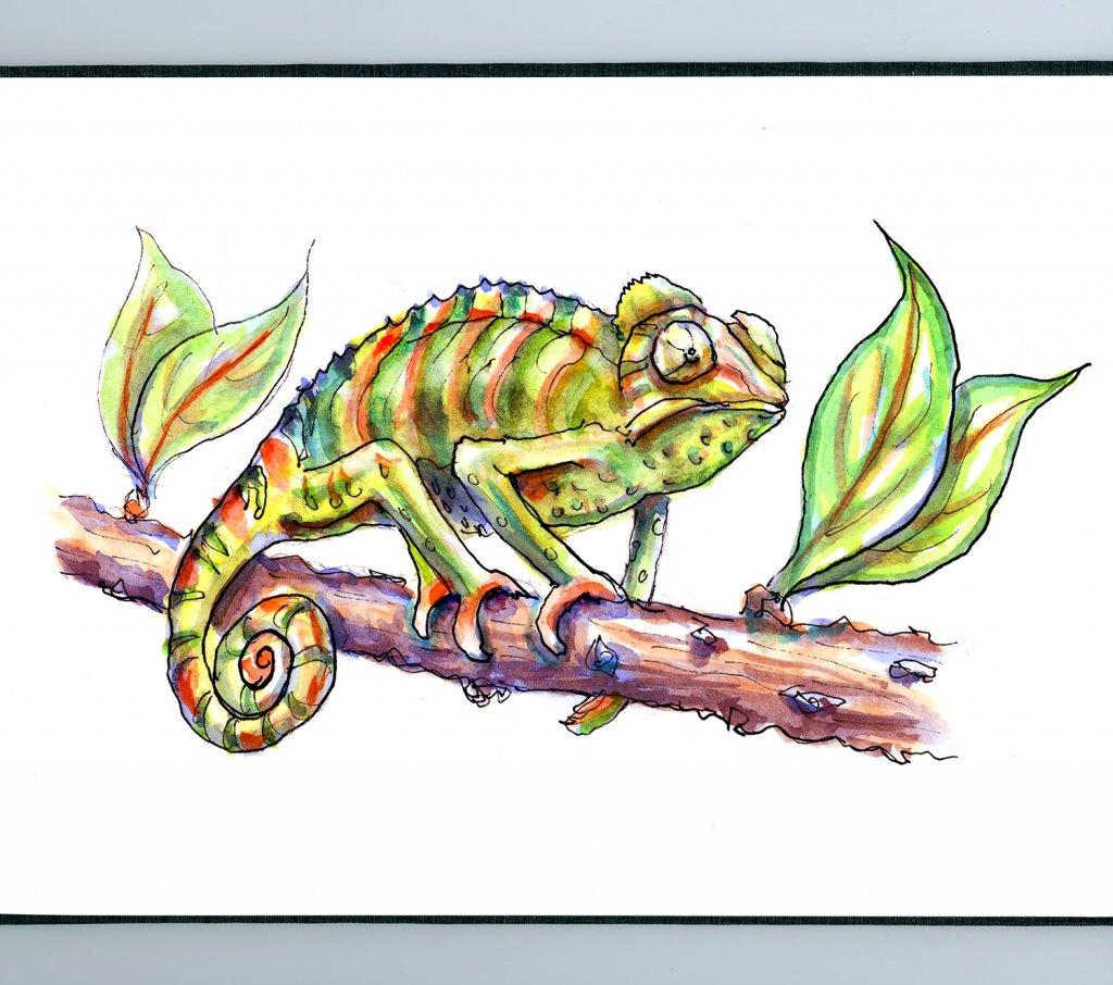 Day 11 - Chameleon Watercolor - Sketchbook Detail - Doodlewash