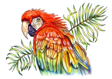 Day 2 - Scarlet Parrot Palm Leaves Watercolor - Doodlewash