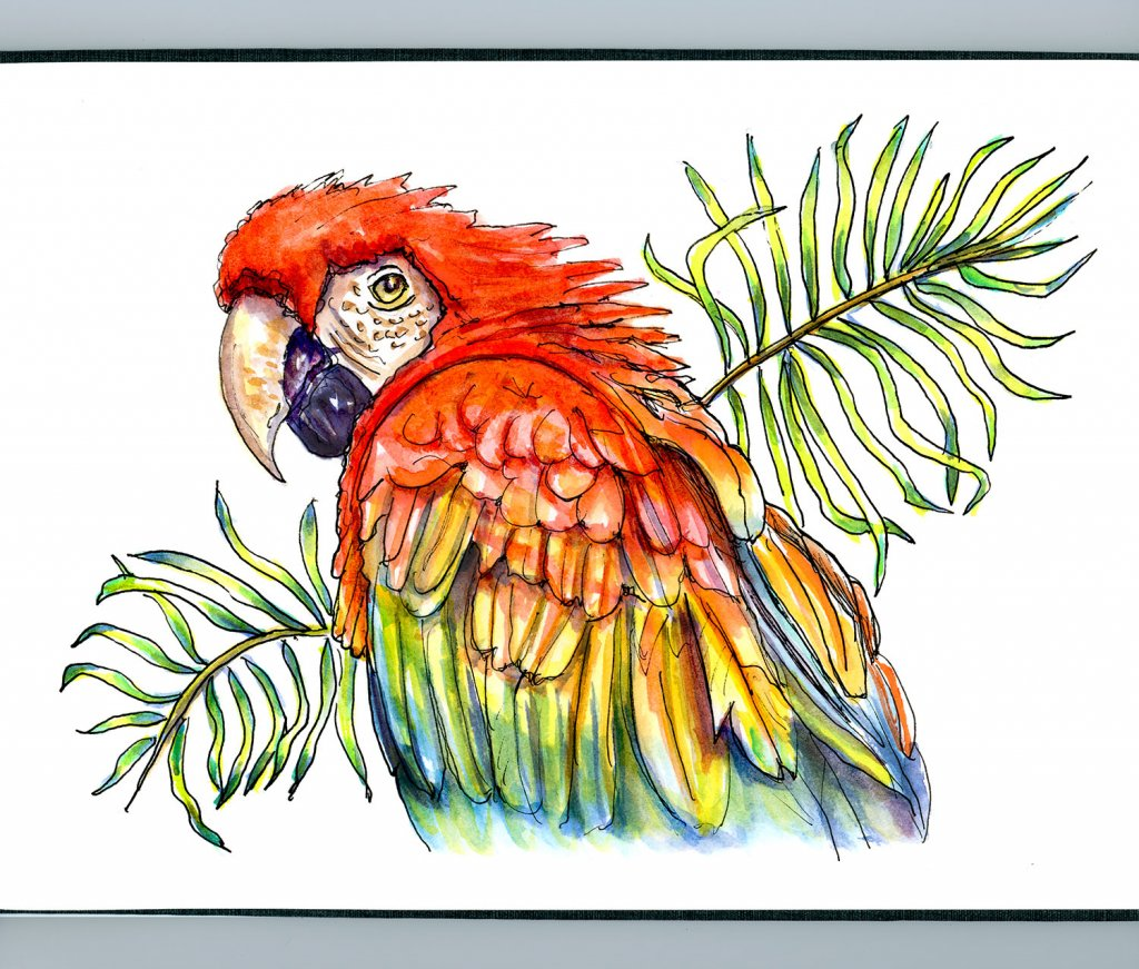 Day 2 - Scarlet Parrot Palm Leaves Watercolor - Sketchbook Detail - Doodlewash