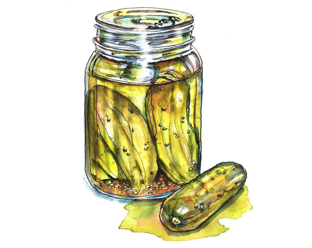 Day 23 - Pickle Jar Of Pickles Watercolor - Doodlewash