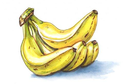 Day 25 - Bananas Watercolor - Doodlewash