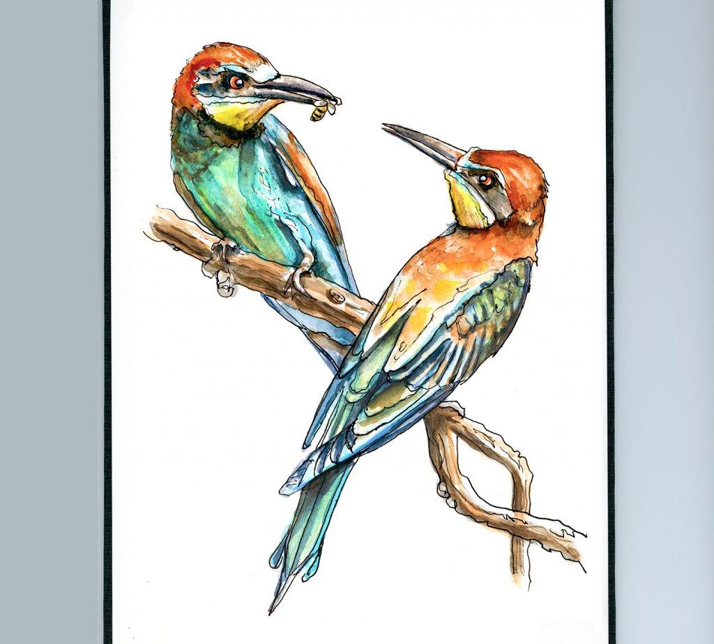 Day 8 - European Bee-Eater Bird Watercolor - Sketchbook Detail - Doodlewash